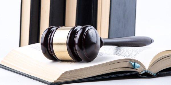 Cuales son los procedimientos judiciales